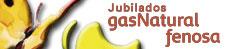 Asociación Provincial de Jubilados y asimilados de Gas Natural Fenosa