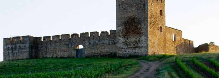 castillo-alentejo