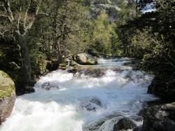 008 Parque Nacional
